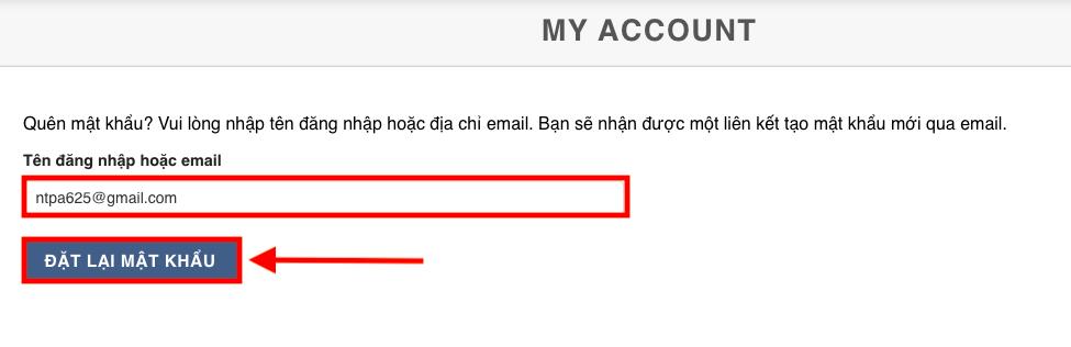 Nhập email quản trị để nhận link yêu cầu xác nhận thay đổi mật khẩu
